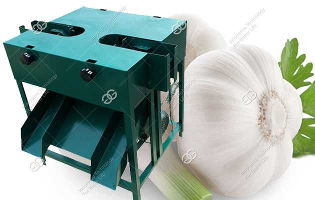 Garlic Root Cutting Machine|Commercial Garlic Root Cutter