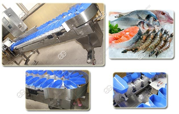 Frozen Fish Weight Sorting Machine